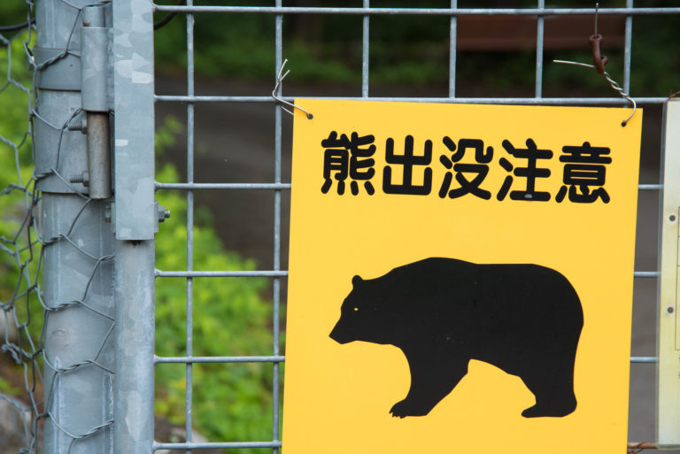 bear-caution-tyuui
